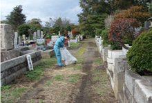 多磨霊園は府中市と小金井市をまたいだ場所にある都立霊園。