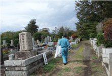 日本初の公園墓地で、面積は都立霊園最大の128万㎡。